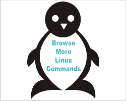 Browse Linux commands